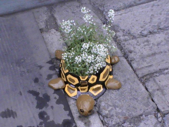Клумба в виде черепахи